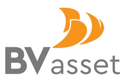 BV ASSET - LĨNH VỰC TÀI CHÍNH